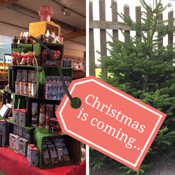 Christmas is coming to Sharnfold Farm in East Sussex